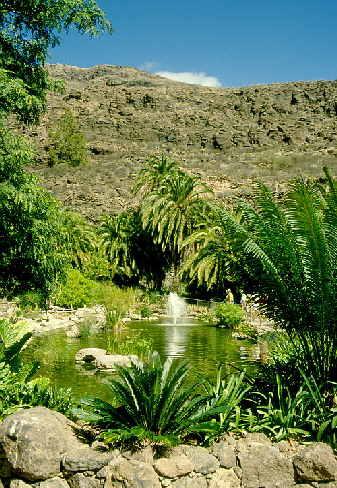 Bilder Gran Canaria